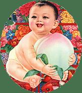 bébé lotus